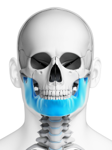 3d image about jaw health 2
